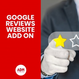 Google reviews website add on